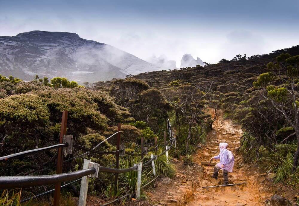 poncho's op mount Kinabalu