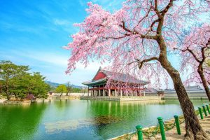 Beste reistijd Zuid Korea