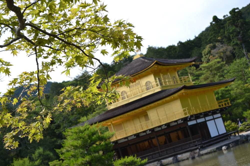 Kinkaku Ji in Kyoto