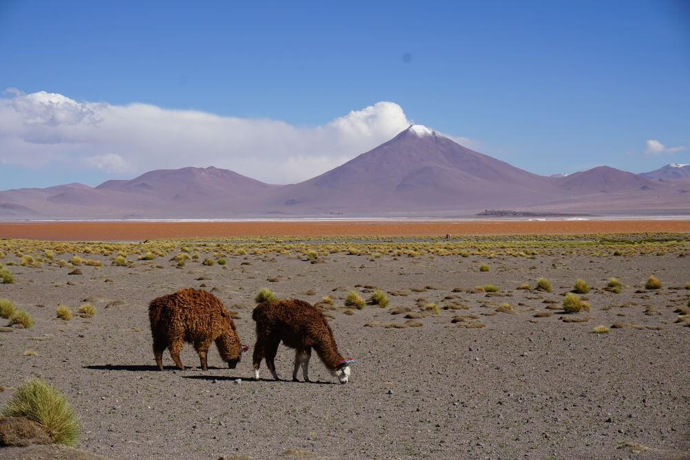 Rainbow Mountains, Bolivia