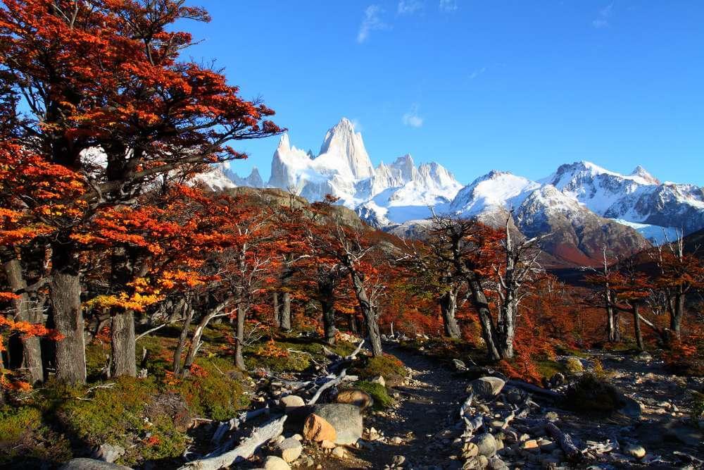 El Calafate, Patagonië