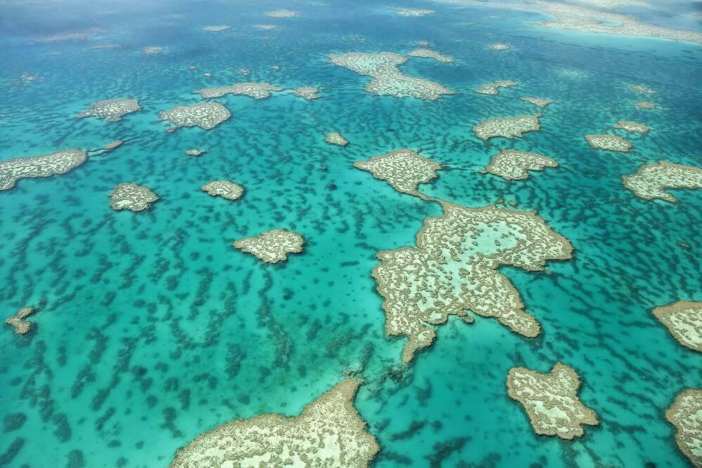 Great Barrier Reef bij Cairns