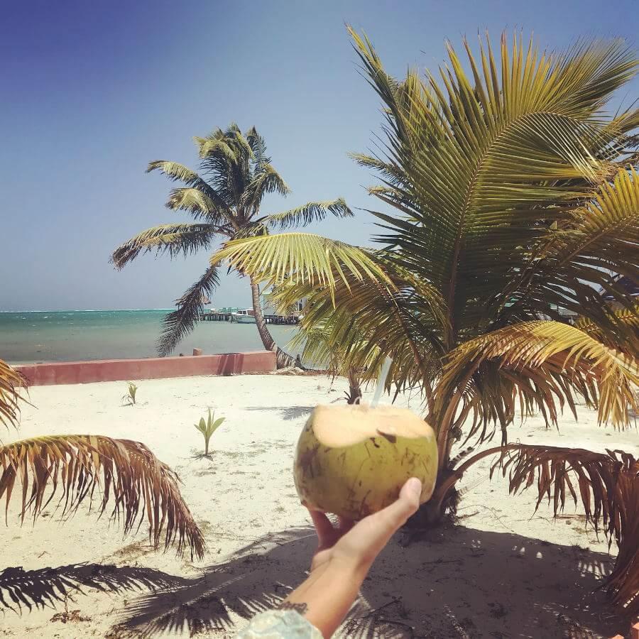 Budget voor Belize