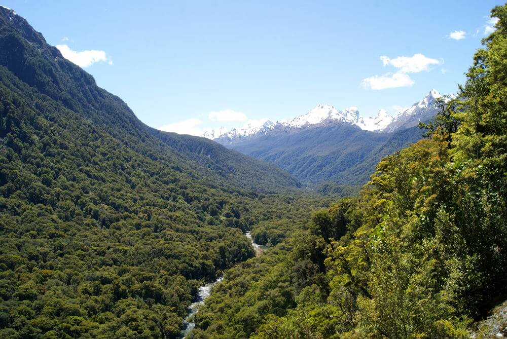 Hollyford Valley, Nieuw-Zeeland