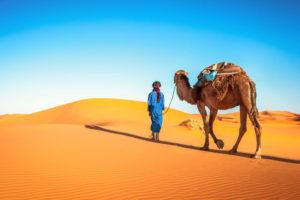 Budget voor Marokko