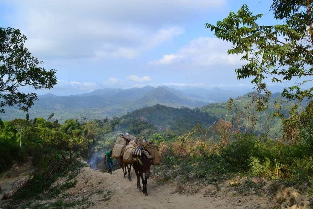 Hike naar Ciudad Perdida in Colombia