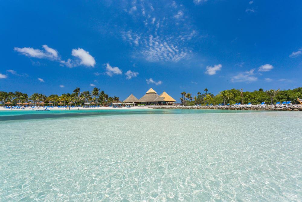 Arubaa