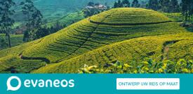Banner Evaneos
