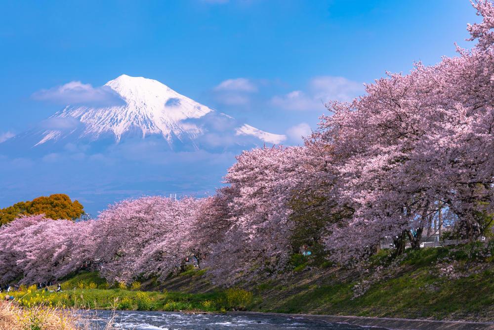 Reistijd voor Japan