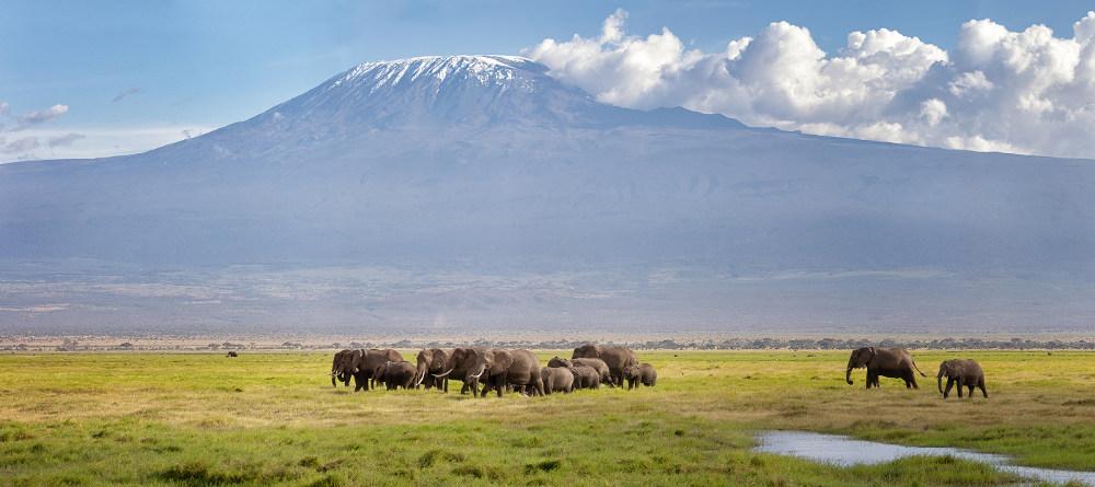 Reisinformatie over Kenia
