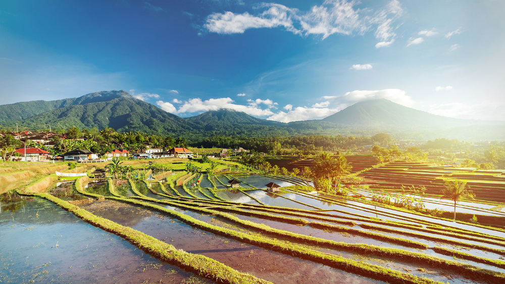 Jatiluwih op Bali
