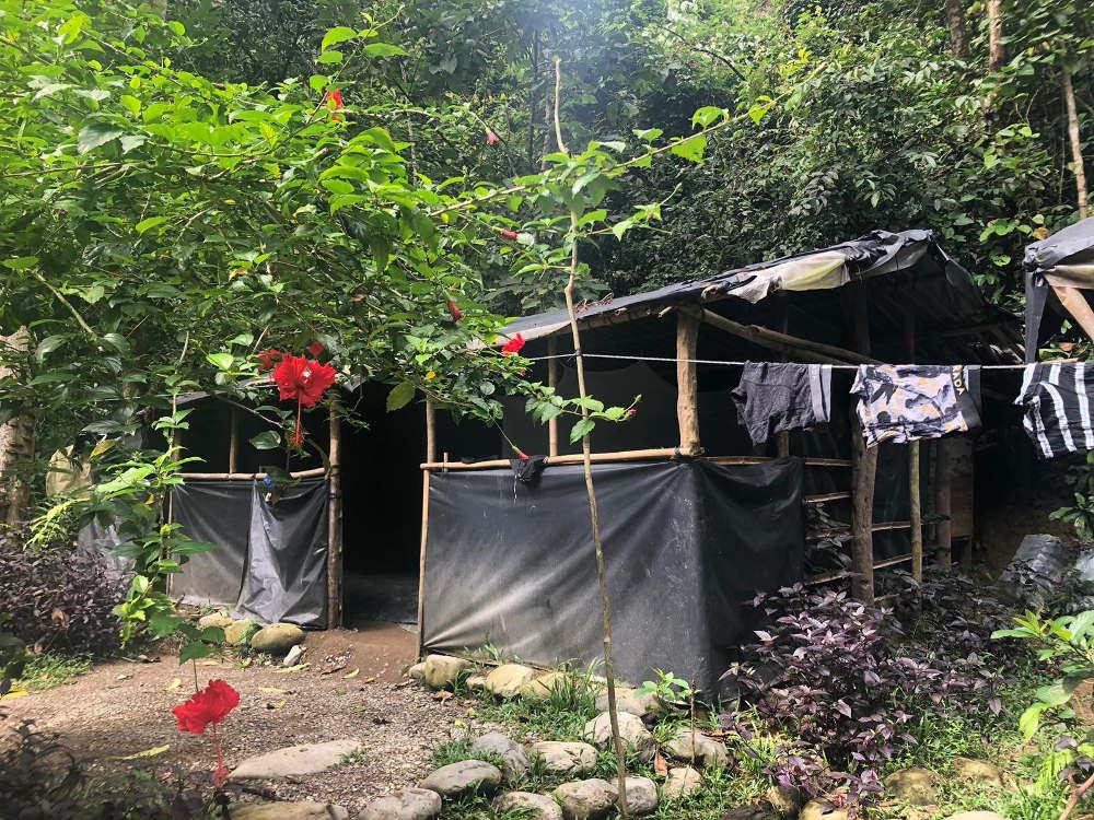 Kamp Bukit Lawang