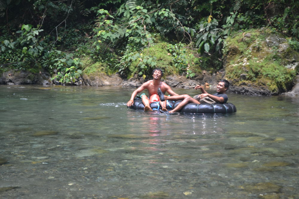 Gidsen Orang Oetan trekking