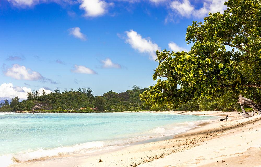 Vakantie naar de Seychellen