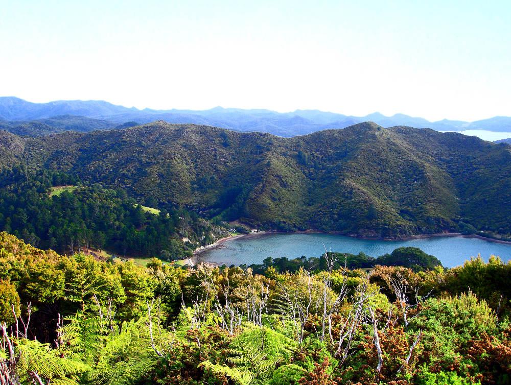 Orama's Bay Great Barrier Island Nieuw Zeeland