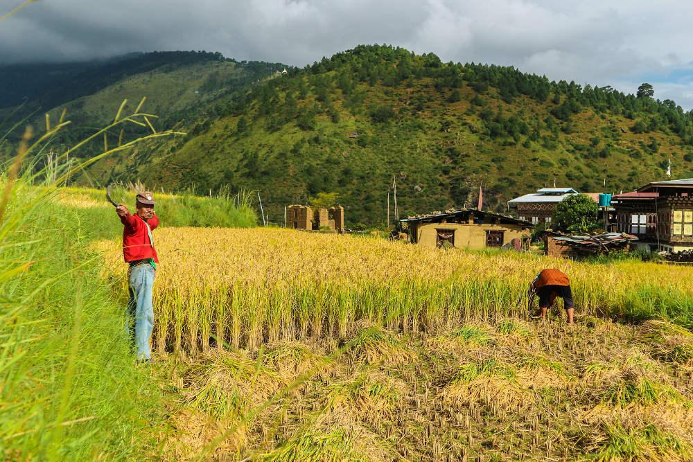 Rondreis in Bhutan