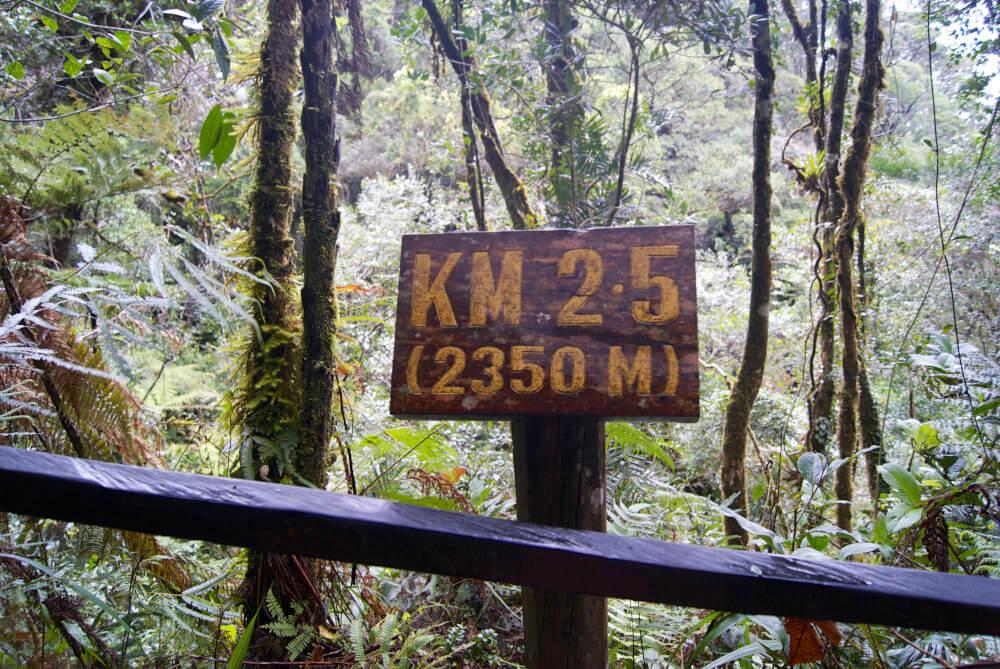 Halverwege de beklimming Mount kinabalu