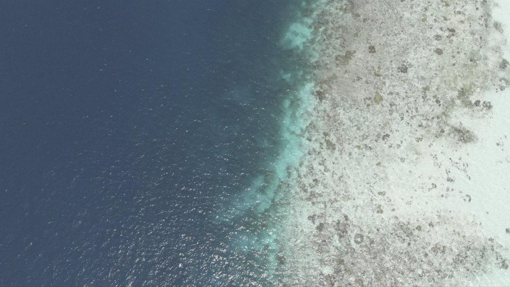 Drone Snorkelen
