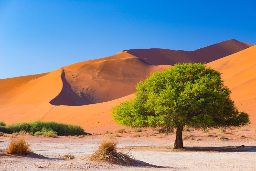 Sossusvlei Route-Namibie-