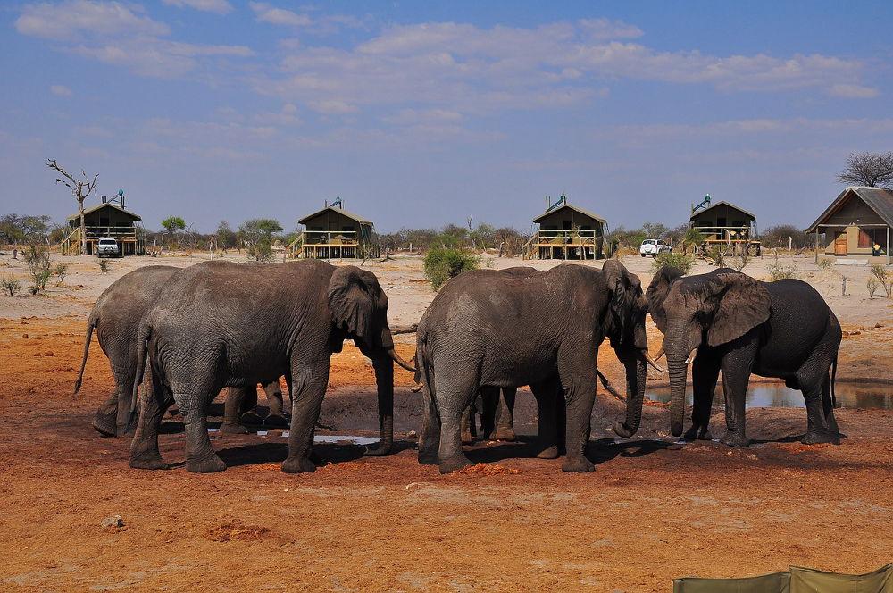 Budget voor Namibië