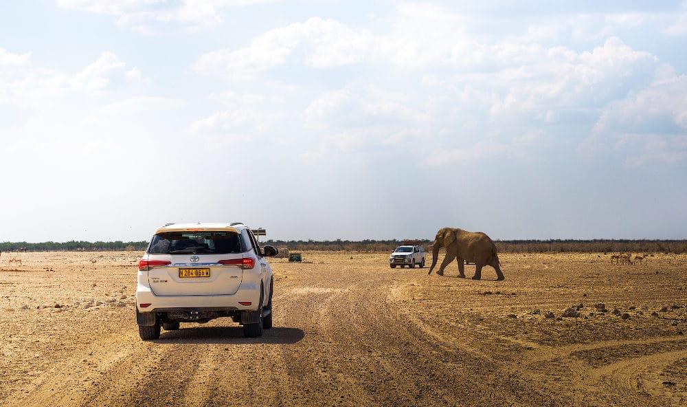 wegen Etosha National Park