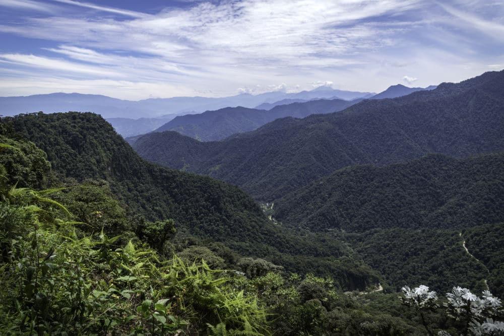 Bella Vista Valley in Mindo
