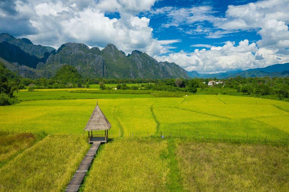Rijstvelden in Laos