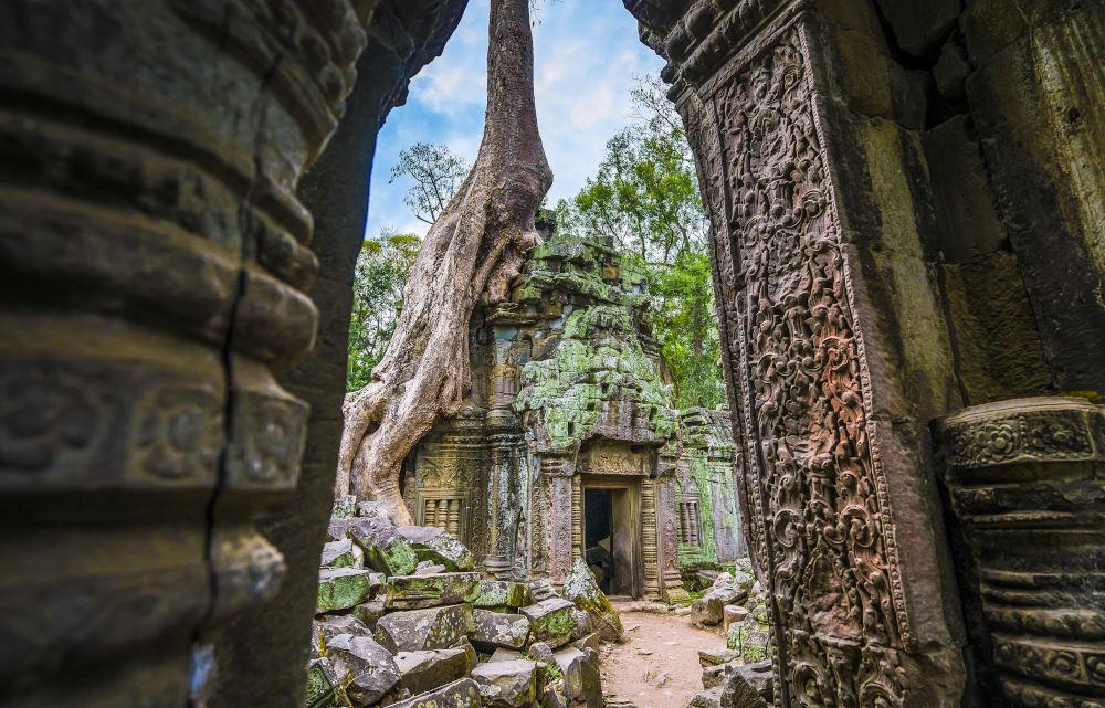 Ta Prohm in Angkor, Cambodja