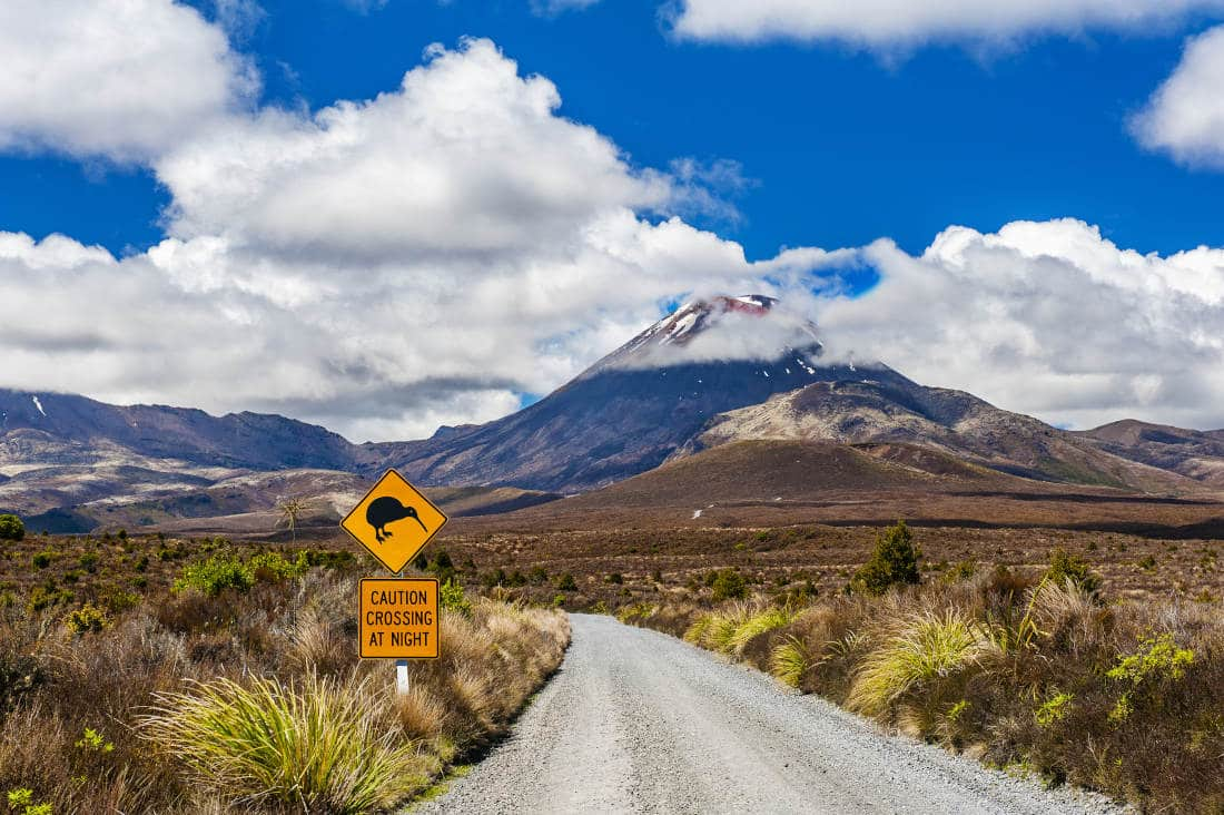 Mt. Ngauruhoe Nieuw-Zeeland